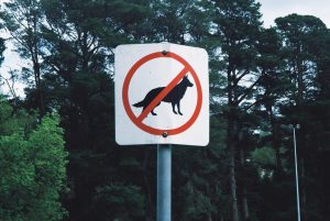 dogs not allowed sihn