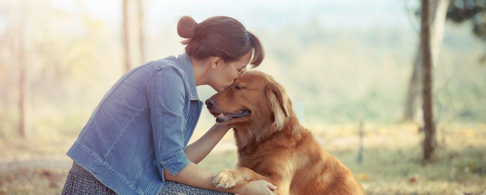 friendliest dog 1 e1573732467436