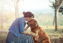 10 Friendliest Dog Breeds