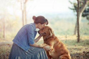 friendliest dog