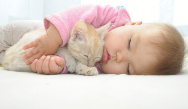 baby hugging cat