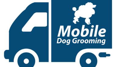 mobile grooming 1