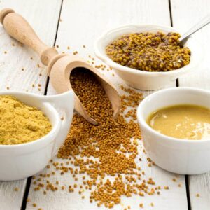 Is Mustard Good or Bad for Dogs?