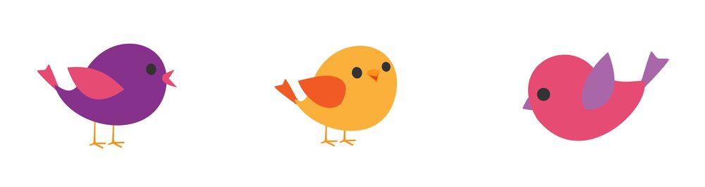 birds different age e1580068254579