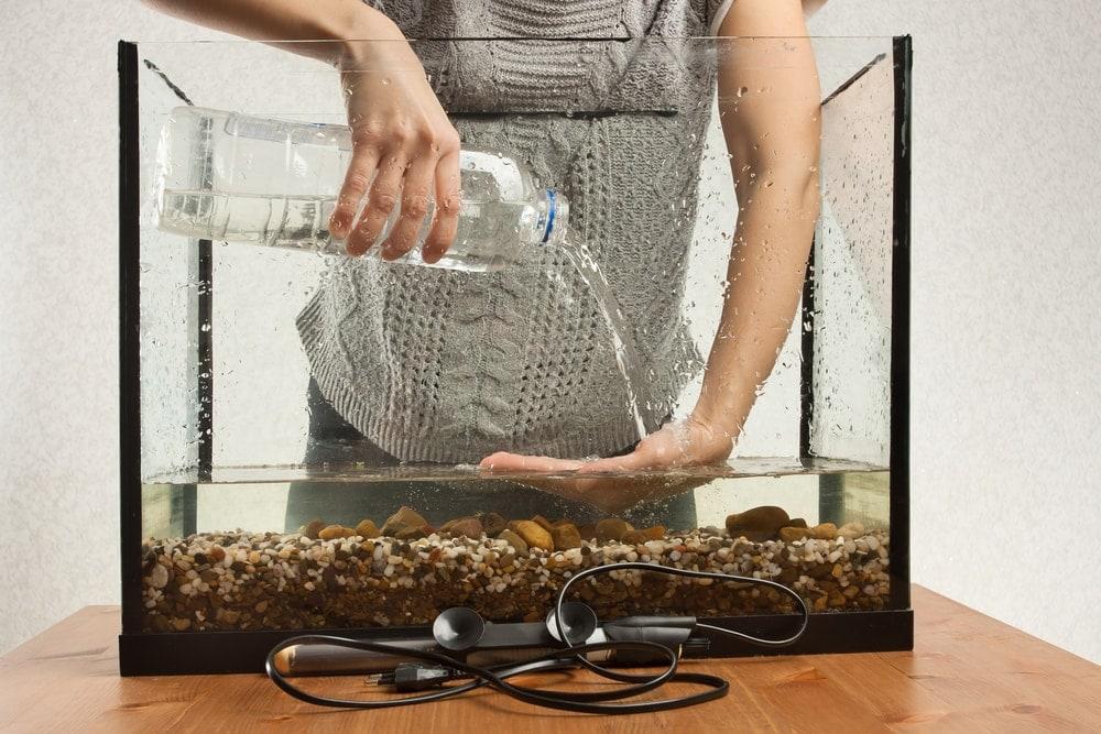 fill aquarium