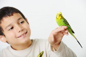kid with pet bird