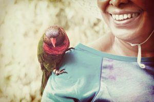 pet bird on shoulder