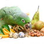 Safe Vegetables for Pet Birds