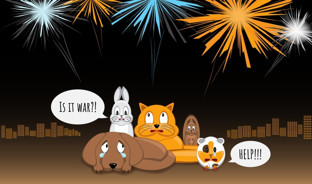 animals scared of fireworks
