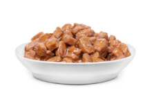 My Dog Ate Cat Food - What Should I Do?