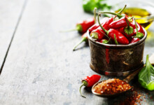 Can Dogs Eat Spicy Food? - Is it Safe?