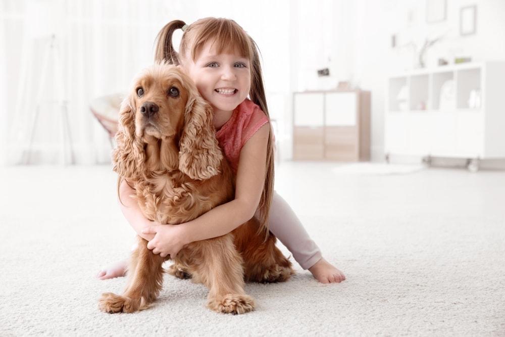 dog autistic children