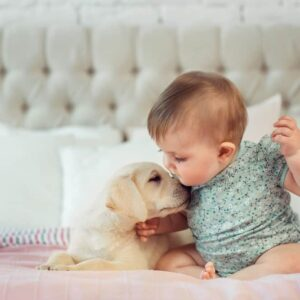 10 Best Dog Breeds for Homes with Babies