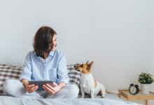 How Much Should you Charge for Overnight Dog sitting?