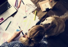 Top 10 Best Dogs for College Students