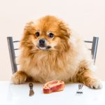 Can Dogs Eat T-Bone Steak & Is it Safe?