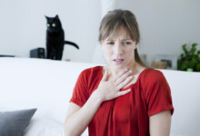 Hypoallergenic Cats - What You Need to Know