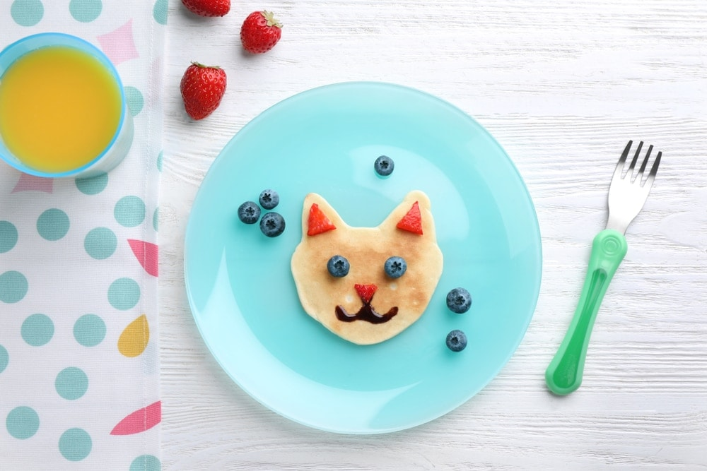 blueberry cat pancake