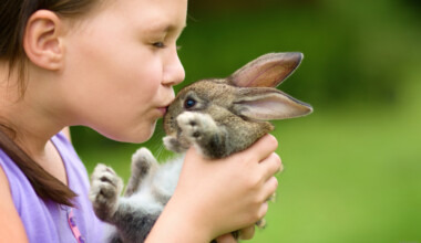 girl and brown rabbit