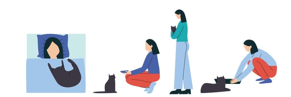 girl is training cat discipline e1583753616542
