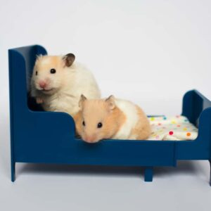 Hamster Bedding: What are the best options?