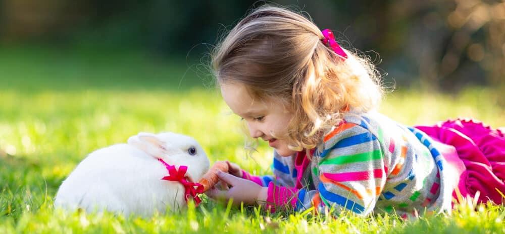 rabbit and kid play 1 e1585394195524