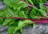 Can Guinea Pigs Eat Beet Greens?
