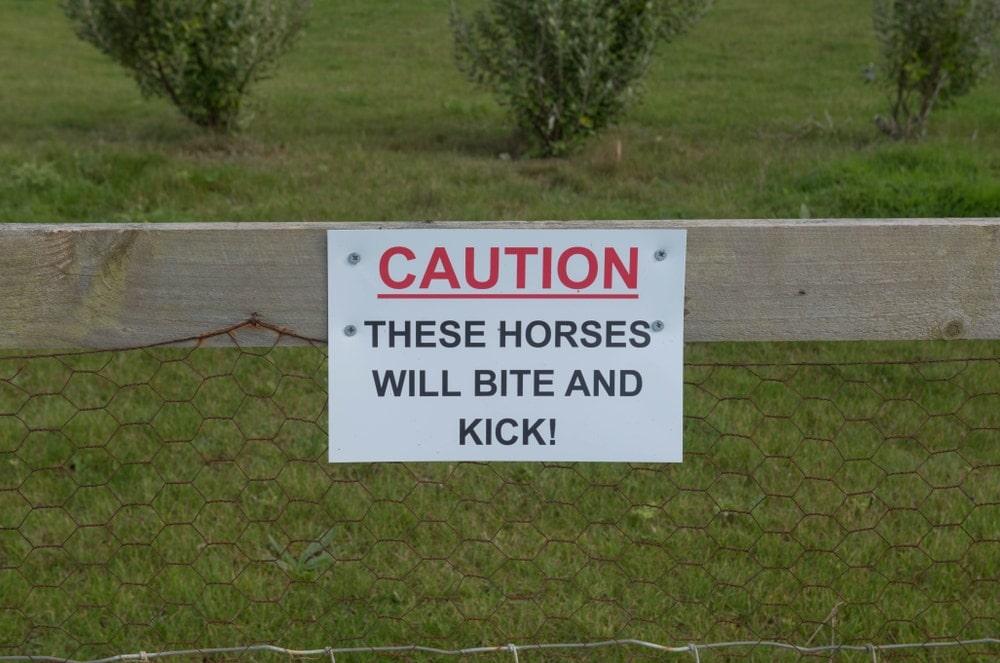 biting horse