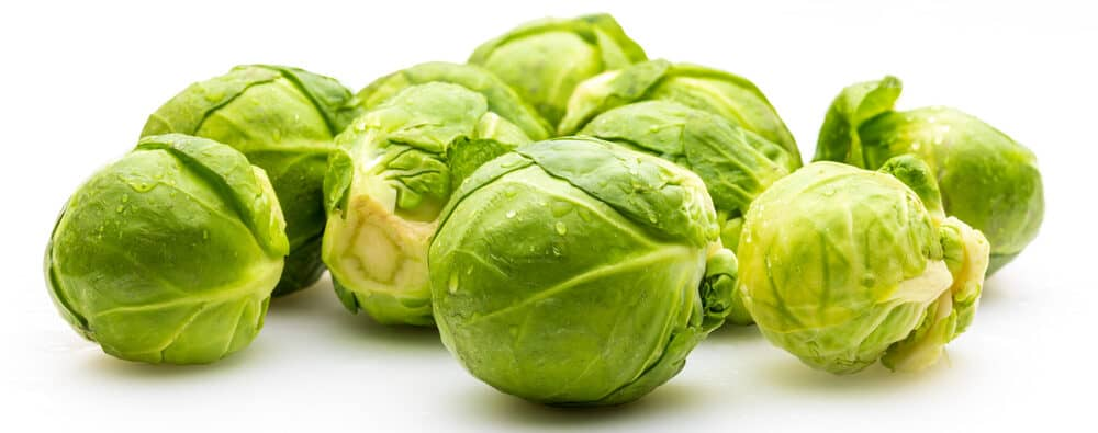 brussels sprout isolated e1590145257237