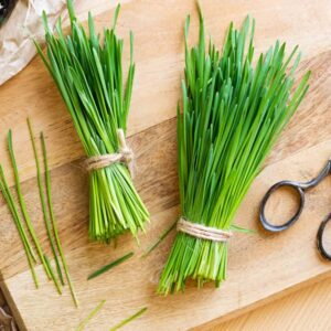 Can Horses Eat Wheatgrass?