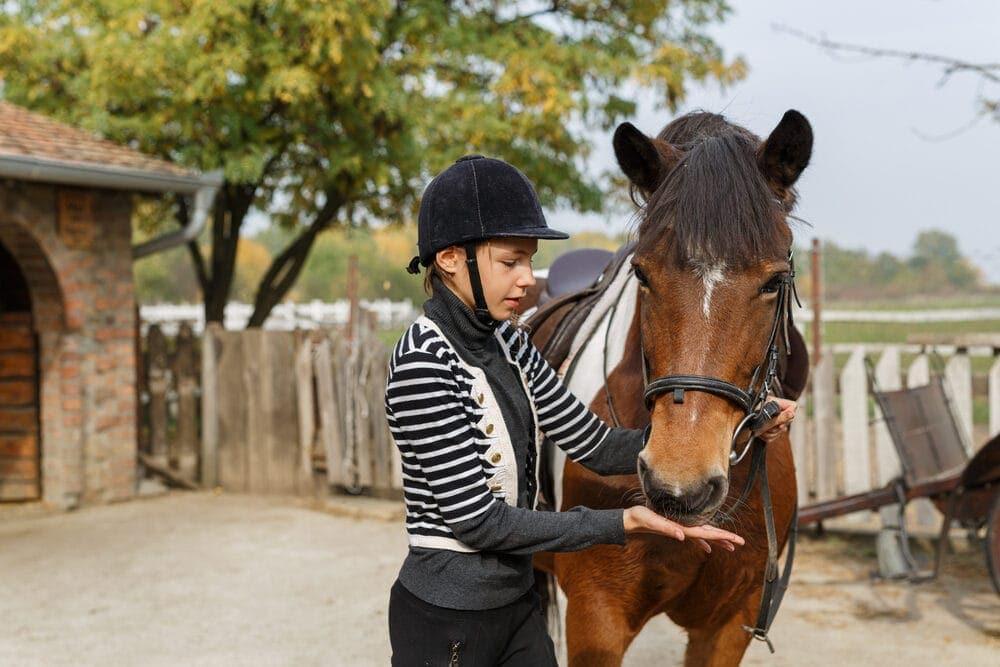 girl feeding horse e1590495727804