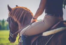 How to Overcome Your Fear of Riding Horses