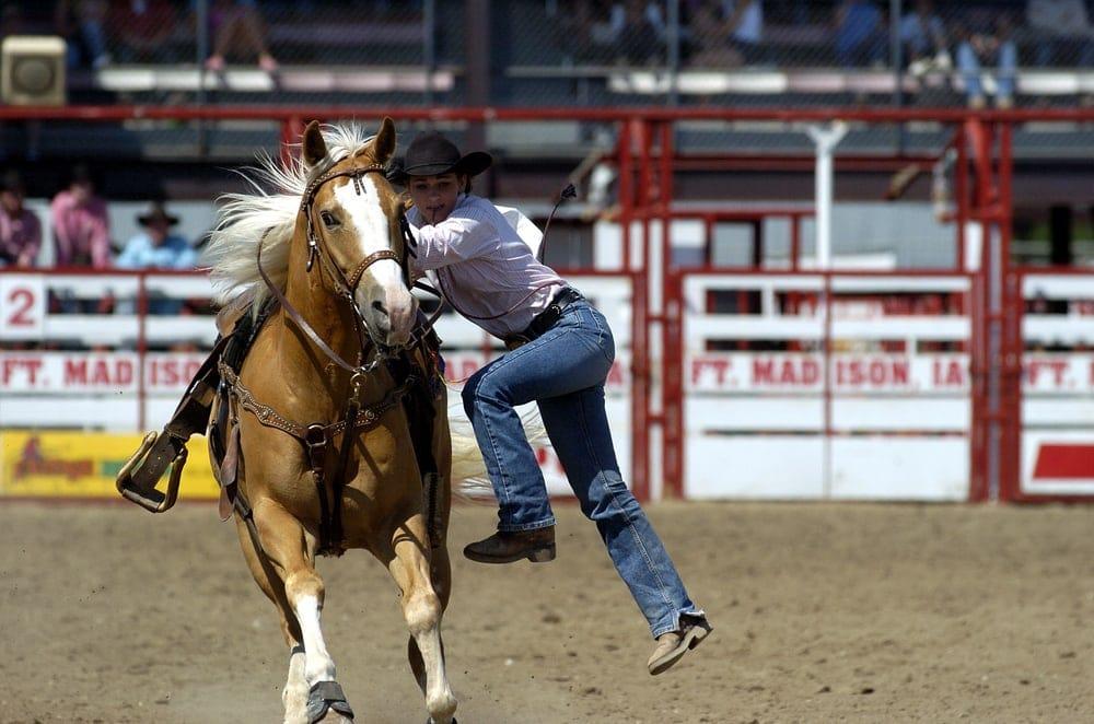 horse dismount
