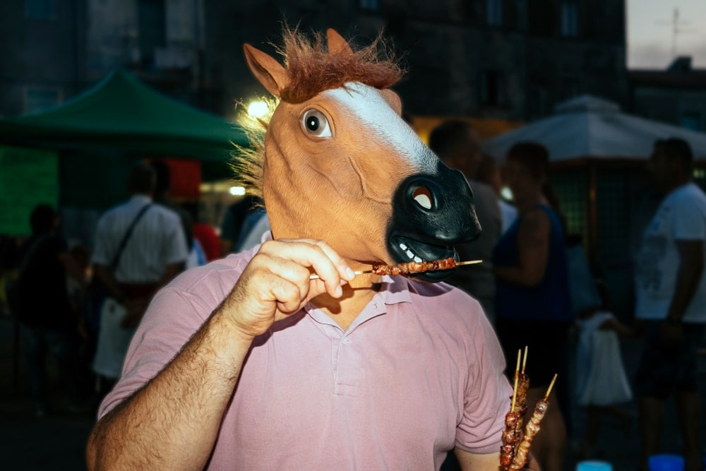 horse eating meat