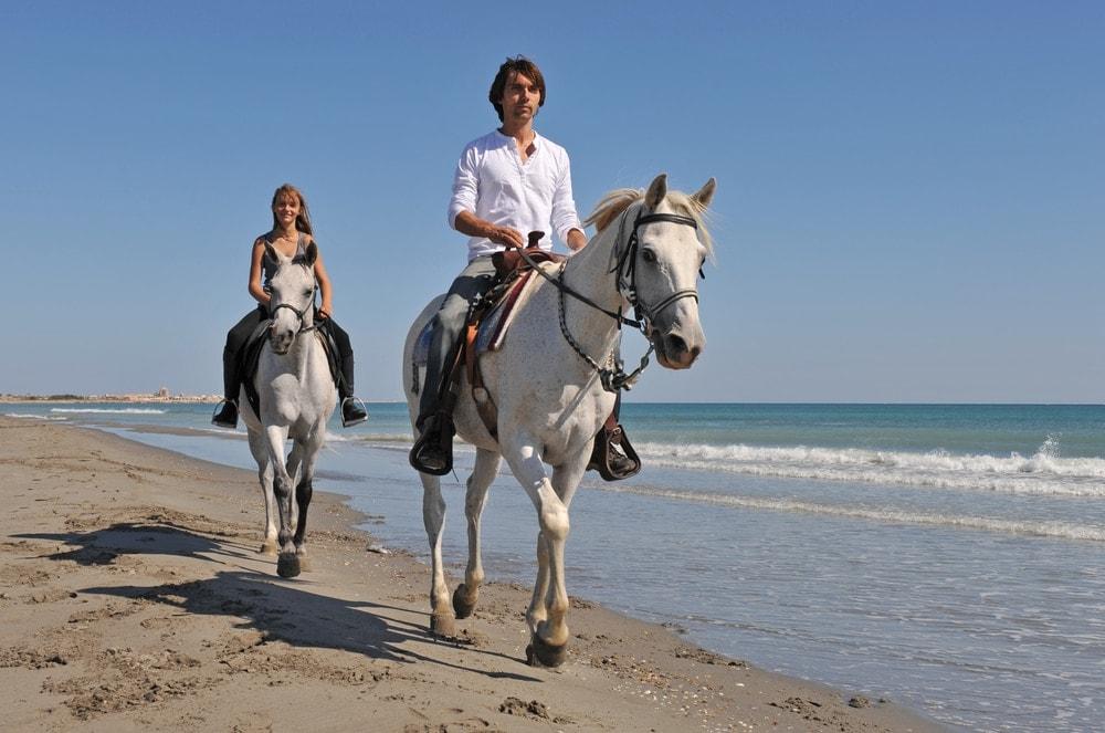 horse ride on a beach