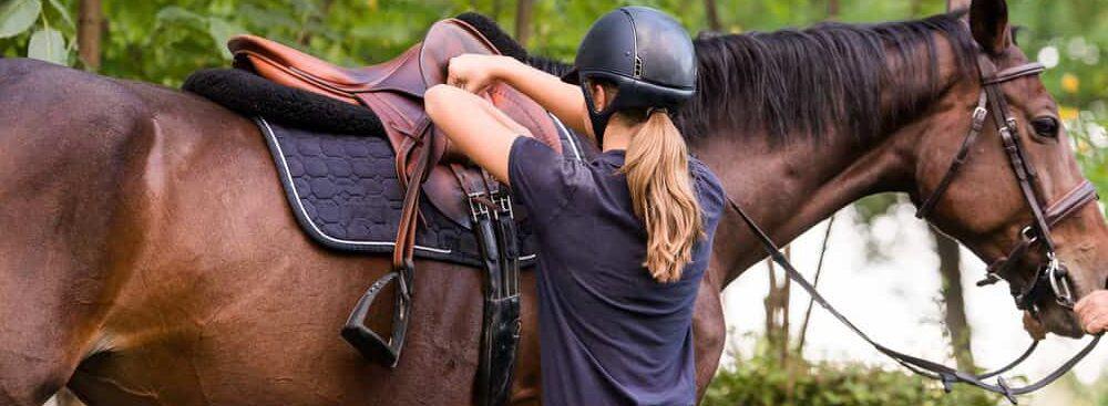 horse with sadle e1590597259488