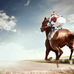 Is Horse Riding Really a Sport?