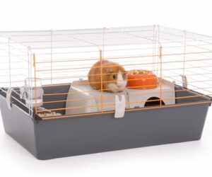 pet store cage