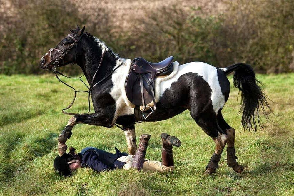 woman fall off horse e1590490633571