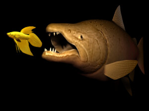 Do Fish Eat Other Fish