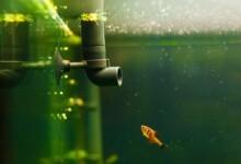 How Often Should I Change My Aquarium Filter?