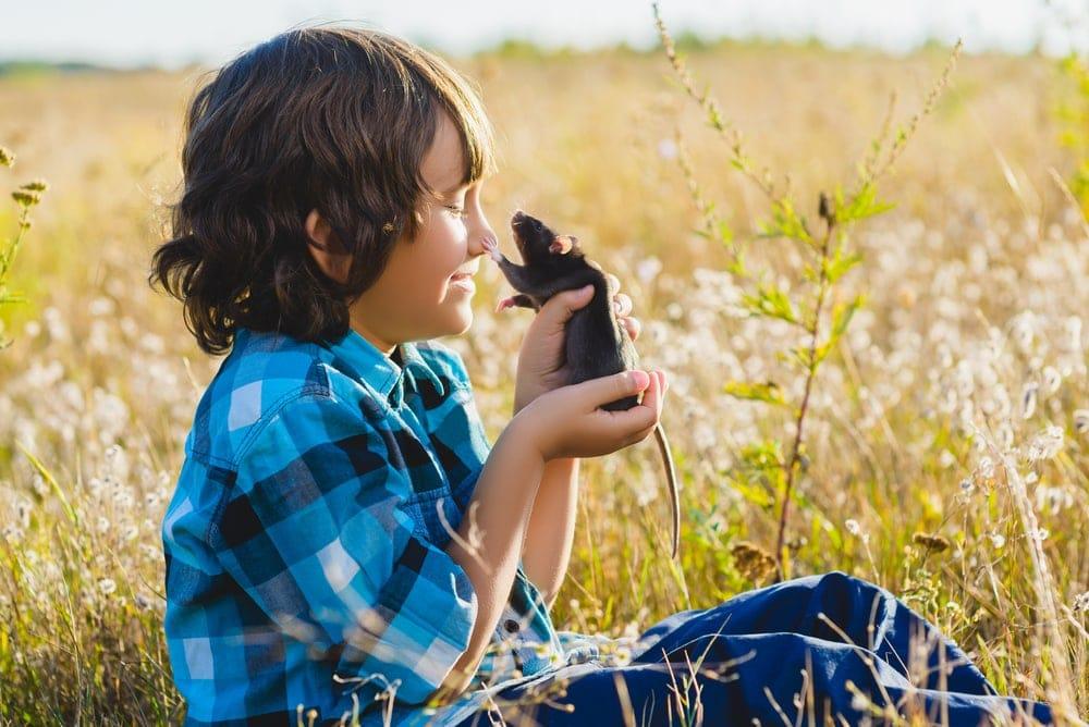 boy and pet rat