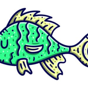 How Do Fish Sleep? – Information