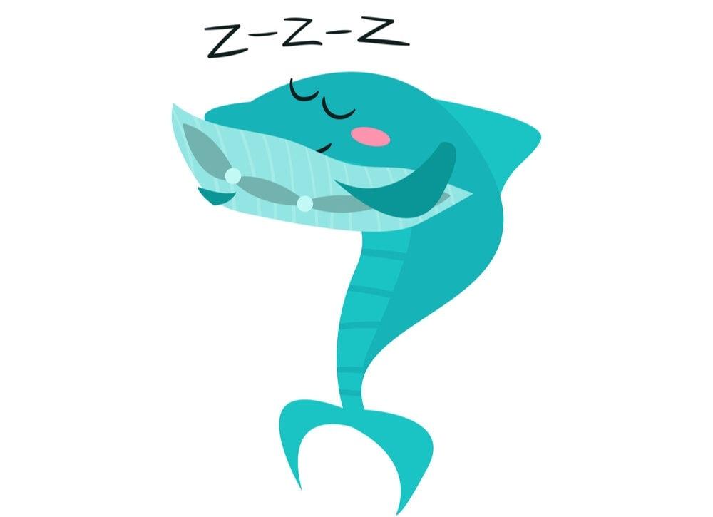sleeping shark e1591438902532